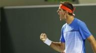 لاعب التنس الأرجنتيني خوان مارتن ديل بوترو